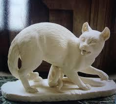 A Roman Cat